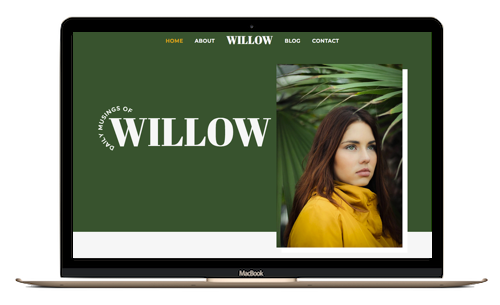 preview of willow project
